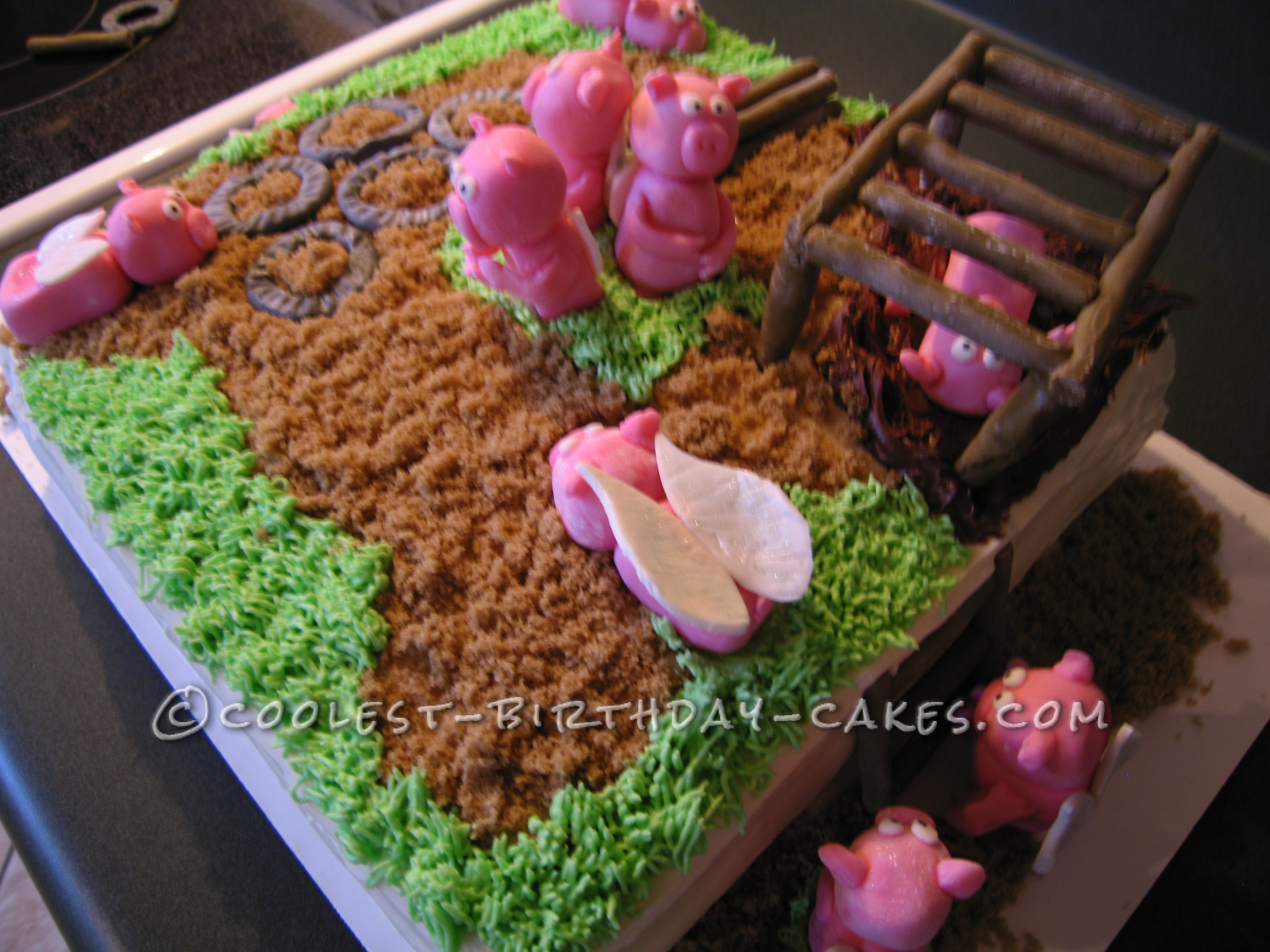 """Coolest """"When Pigs Fly"""" Cake"""