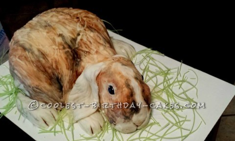 Very Cool Patches the Bunny Cake