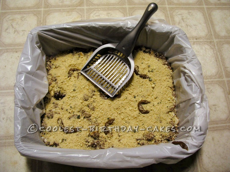 Coolest Homemade Kitty Litter Cakes