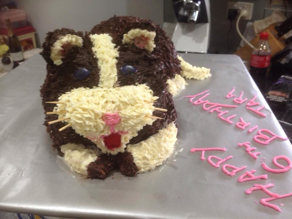 Last Minute Cat Birthday Cake