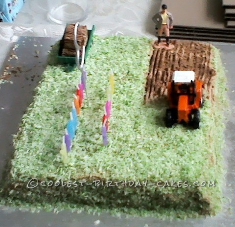Coolest Ploughed Field Farm Cake