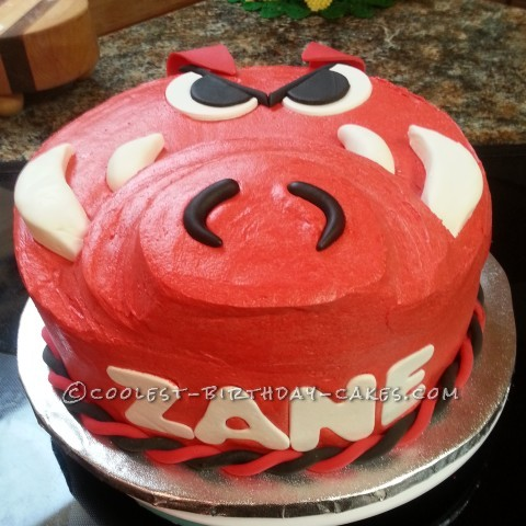 Go Hogs! Razorbacks Birthday Cake!