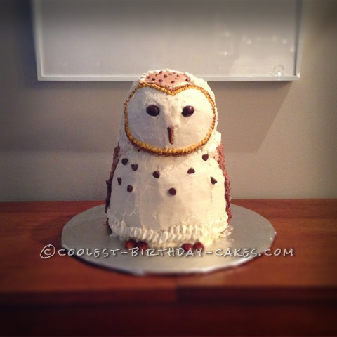 Finished Barn Owl Front View