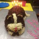 Last Minute Cat Cake