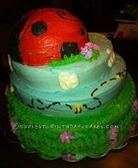 Coolest Ladybug Birthday Smash Cake