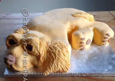 Cutest Working Cocker Spaniel 8th Birthday Cake