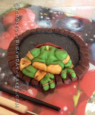 Amazing Teenage Mutant Ninja Turtles Birthday Cake