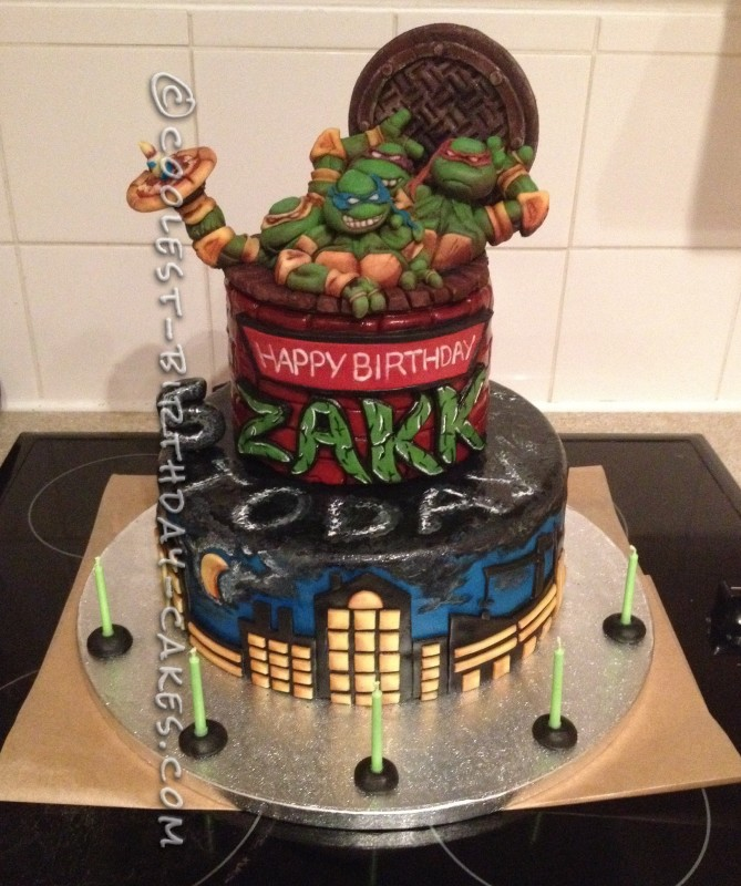 Tremendous Amazing Teenage Mutant Ninja Turtles Birthday Cake Funny Birthday Cards Online Fluifree Goldxyz