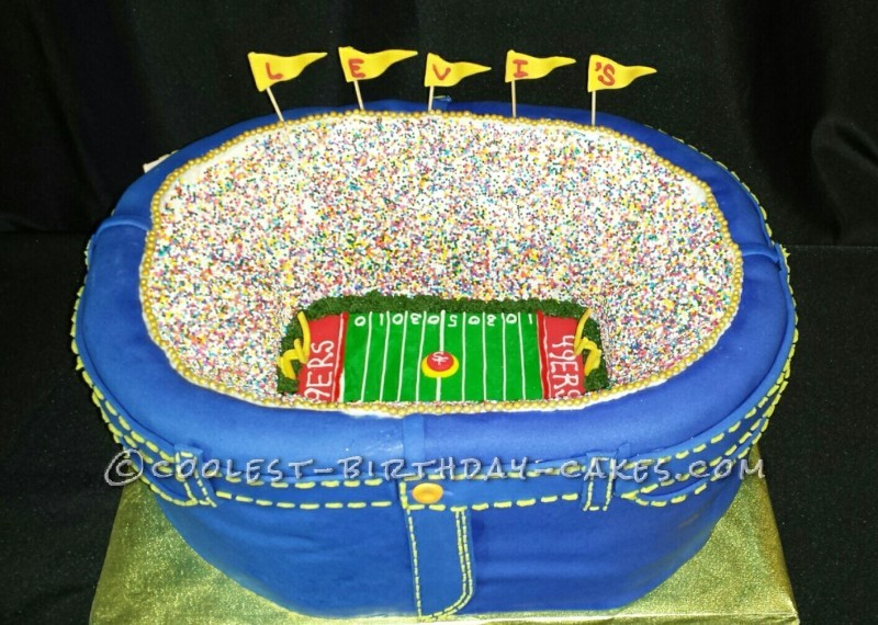 Groovy Coolest Football Stadium Cake Funny Birthday Cards Online Overcheapnameinfo