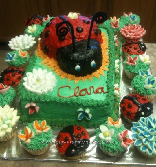 Coolest Ladybug and Flowers Cake