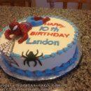 Amazing Spider-Man Birthday Cake