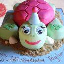 Coolest Turtle Cake