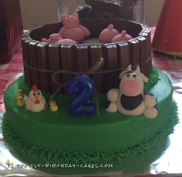 awesome-farm-animal-cake-2nd-birthday-77462-800x5981