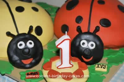 Tremendous Coolest 1St Ladybug Birthday Cake For Twins Funny Birthday Cards Online Unhofree Goldxyz