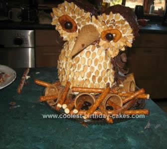 Homemade 24th Owl Birthday Cake