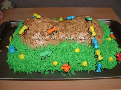 Homemade Anthill Cake Idea
