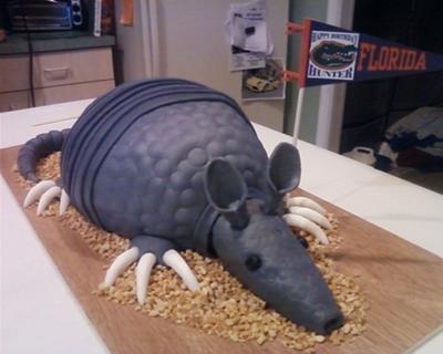 Homemade Armadillo Birthday Cake