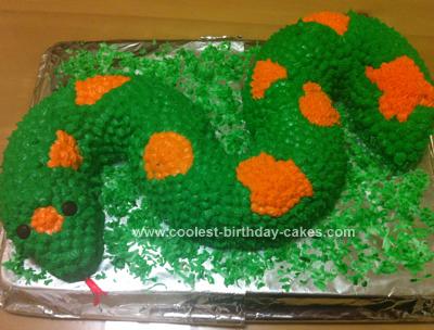 Homemade  Birthday Snake Cake