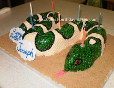 Tremendous Coolest Birthday Snake Cake Funny Birthday Cards Online Aboleapandamsfinfo