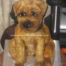 Homemade Border Terrier Dog Cake
