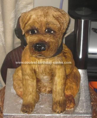 Homemade Border Terrier Dog Cake