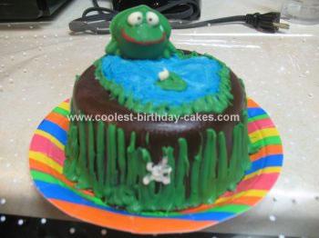 Homemade Breakable Pinata Cake