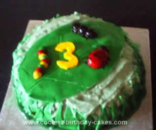Homemade Bugs Cake