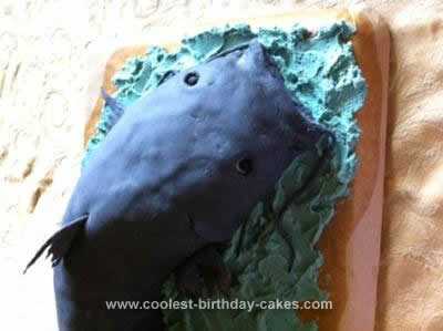 Homemade Catfish Cake