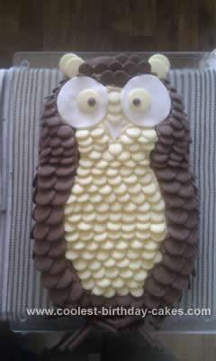 Homemade Chocolate Button Owl Cake