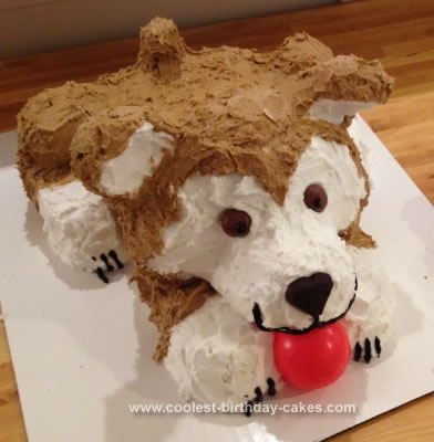 Homemade Doggie Cake