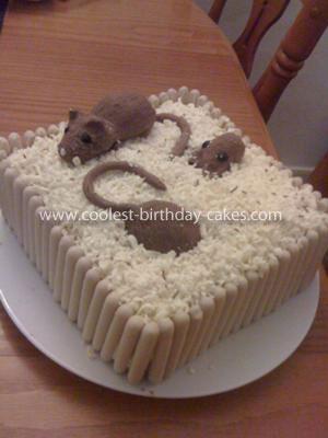 Homemade Gerbil Birthday Cake
