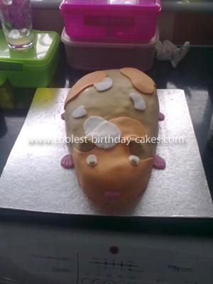 Coolest Guinea Pig Birthday Cake