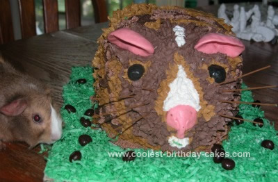 Homemade Guinea Pig Birthday Cake
