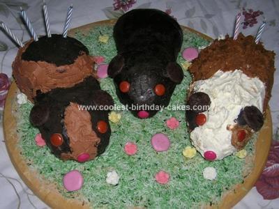Homemade Guinea Pig Cake