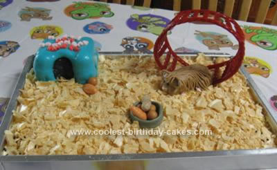 Homemade Hamster Littlest Pet Shop Cake