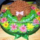 Erin's cute Hedgehog/ Echidna cake