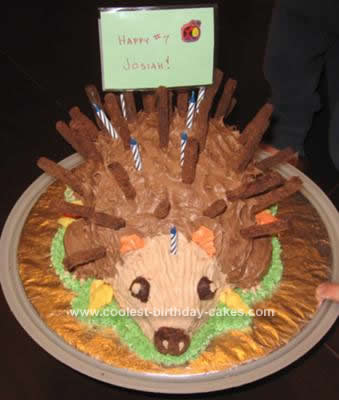 Homemade Hedgie Birthday Cake