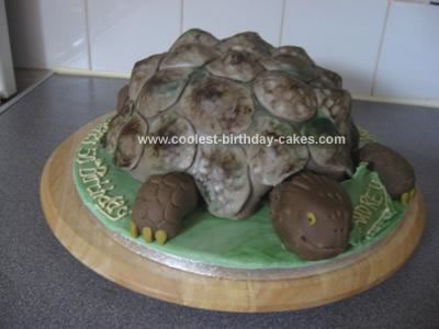 Homemade Tortoise Birthday Cake