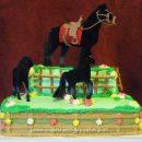 Homemade Horse and Pony Birthday Cake