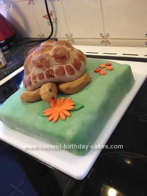 Homemade  Hugo the Tortoise Cake
