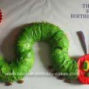 Homemade Hungry Caterpillar 1st Birthday Cake