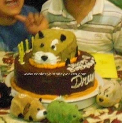 Homemade Kung Zhu Hamster Birthday Cake