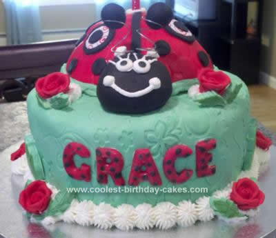 Homemade Lady Bug Cake