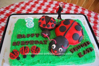 Homemade  Lady Bug Picnic Cake