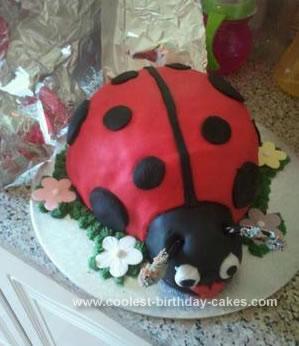 Homemade Ladybird Cake