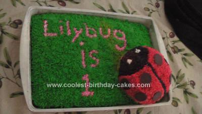 Homemade Ladybug 1st Birthday Cake