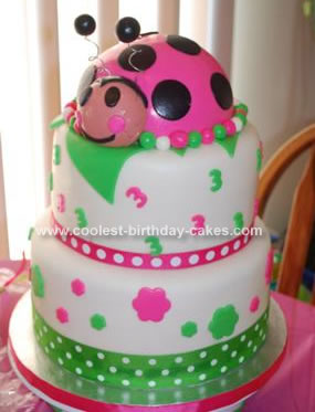 Homemade Ladybug 3rd Birthday Cake Idea