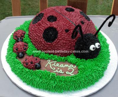 Astounding Coolest Ladybug Birthday Cake Funny Birthday Cards Online Alyptdamsfinfo