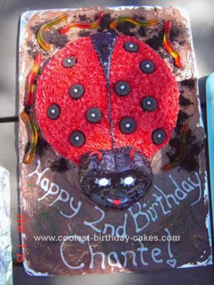 coolest-ladybug-birthday-cake-140-21414895.jpg