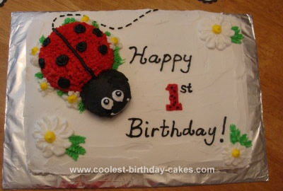 Awe Inspiring 200 Coolest Homemade Ladybug Cakes For Your Diy Birthday Cake Funny Birthday Cards Online Kookostrdamsfinfo